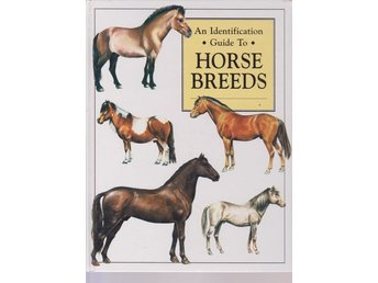 An Identification Guide To Horse Breeds