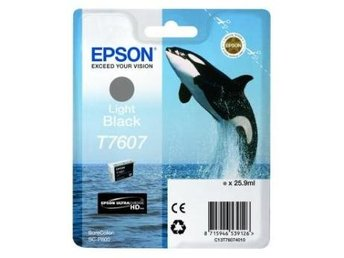 Epson C13T76074010 Light Black