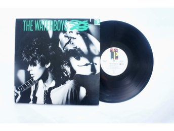 ** The Waterboys ‎– S/T **