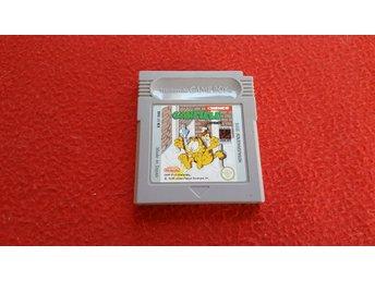 GARFIELD till Nintendo Gameboy - Blomstermåla - GARFIELD till Nintendo Gameboy - Blomstermåla