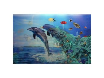 3D Effect Picture Wall Art Prints Dolphin