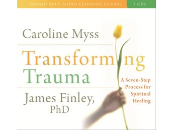 Transforming trauma - uncovering the spiritual dimension 9781591796930