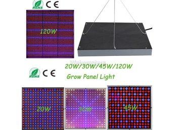 Växtlampa Växtbelysning Fullspektrum lampa LED 30W - Hong Kong - Växtlampa Växtbelysning Fullspektrum lampa LED 30W - Hong Kong