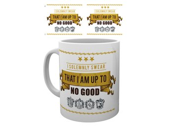 Harry Potter - I Solemnly Swear - Mugg