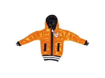Iceman (Orange) Smartphone-Jacka - Large