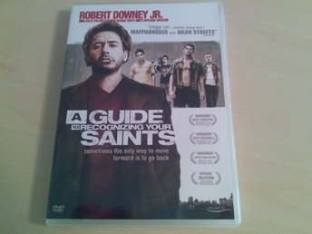A GUIDE TO RECOGNIZING YOUR SAINTS  ( Robert Downing Jr. , 2006 )