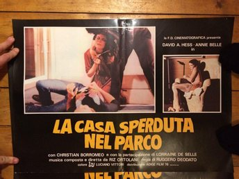HOUSE ON THE EDGE OF THE PARK. RUGGERO DEODATO. DAVID HESS. POSTER! PHOTOBUSTA