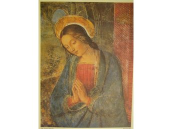 Ikonbild The Virgin Adoring av Pinturicchio