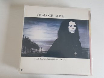 Dead or alive   Lp