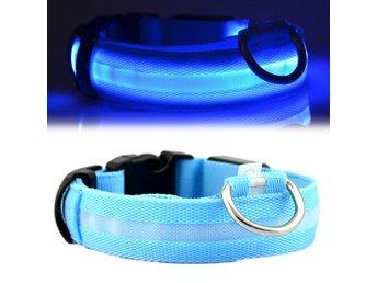 Led Hundhalsband Halsband For Hund Med Reflex Bla S