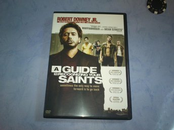 A guide to recognizing your saints (Robert Downey Jr)