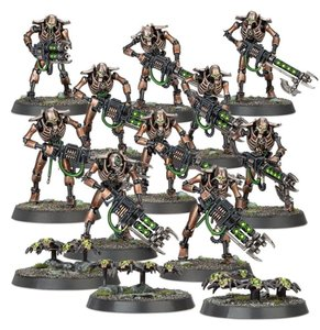 10 Necron Warriors and 3 Bases of Scarabs